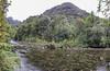 Rio Chaicas and Valdivian rainforest