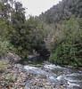 Rio Chaicas