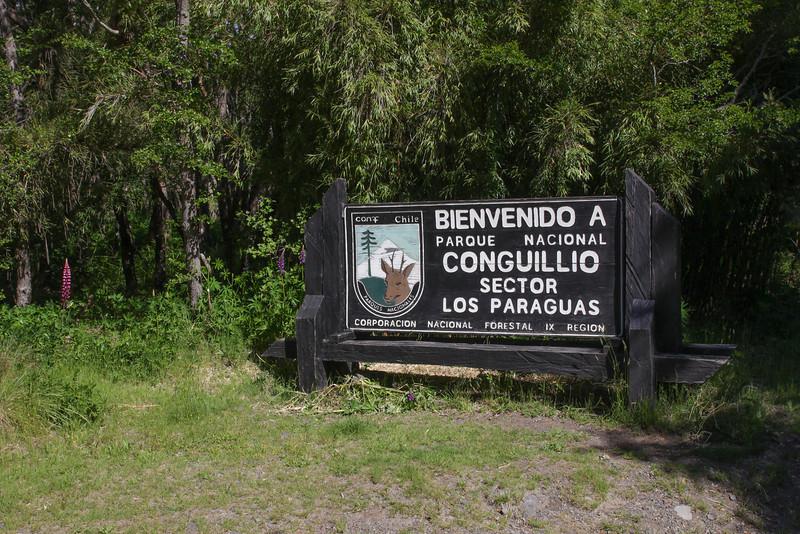 Parque Nacional Conquillio, Araucania