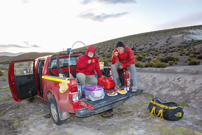 ~4400m, S of Cancose near the Bolivian border, Tarapaca