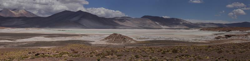 Reserva Nacional Los Flamincos, Sala de Atacama, Antofagasta