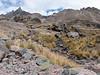 Upispampa 4450m-Ararapass 4770m-Auzangatepass 4870m-Auzangatecocha 4670m