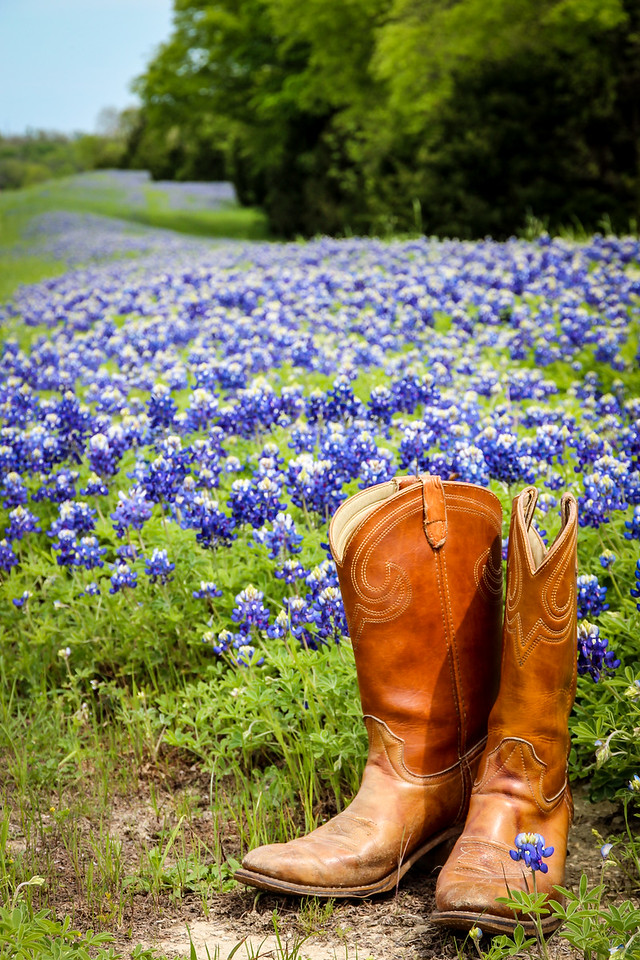 Boots and Bluebonnets