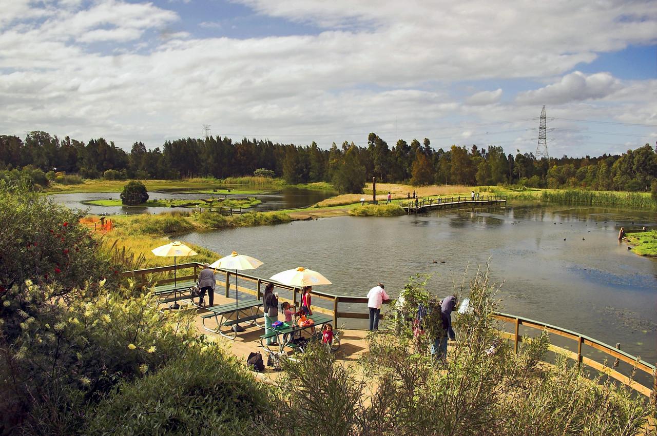 Shortland Wetlands Newcastle - NSW Australia - Sep 2005