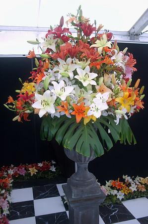 Ellerslie International Flower Show Botanic Gardens Manurewa New Zealand - 19 Nov 2006