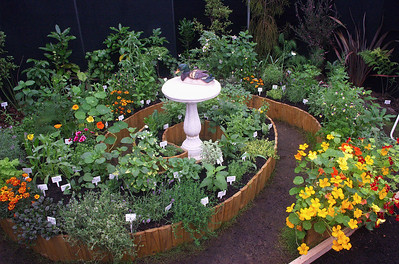 Curative herb garden Ellerslie International Flower Show Botanic Gardens Manurewa New Zealand - 19 Nov 2006