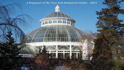 2014  Potpourri of NYBG