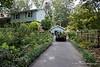 Betsy Hill's Garden