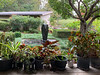 Diebold courtyard, fountain, seen from veranda.  Container tropicals