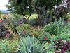Diebold main garden looking toward Blue Ridge