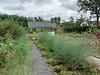 Vegetable garden at MofSV