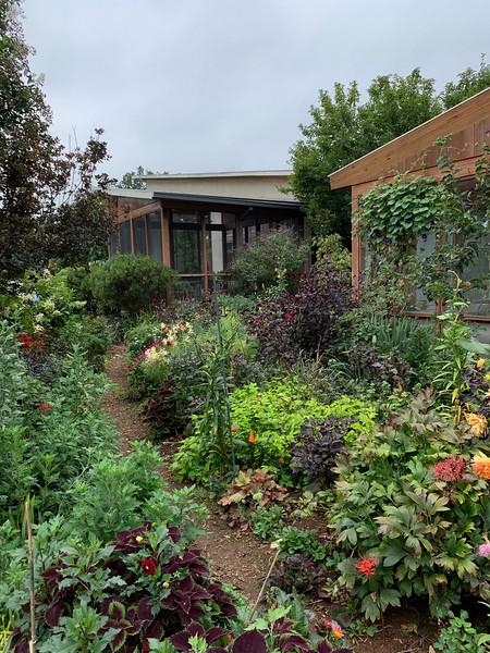 Diebold- looking toward screened room in main/house garden