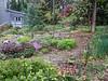 Donald LaFond's Garden (80 of 94)