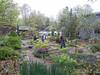 Donald LaFond's Garden (54 of 94)