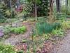 Donald LaFond's Garden (81 of 94)