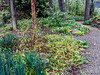 Donald LaFond's Garden (51 of 94)