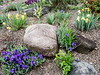 Donald LaFond's Garden (79 of 94)
