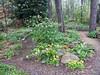 Donald LaFond's Garden (52 of 94)