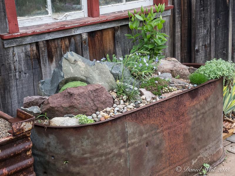 Donald LaFond's Garden (91 of 94)