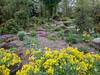 Donald LaFond's Garden (92 of 94)