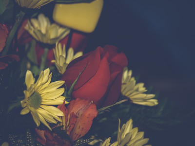 2008 Birthday Flowers