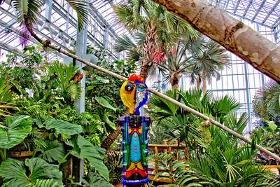 Nicholas Conservatory & Gardens, Rockford, Illinois (2.10.2013)