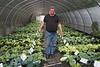 Seasons Past Nursery and Farm...Even Santa buys hostas.  (This is Dan's caption.  Ho, ho, ho, growls Jim.)