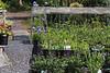 Seasons Past Nursery and Farm
