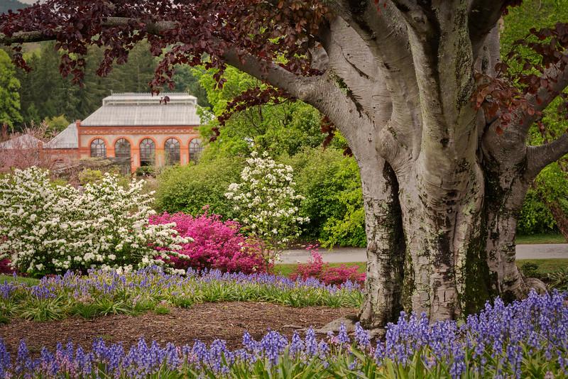 Gardens - Visionova Photography