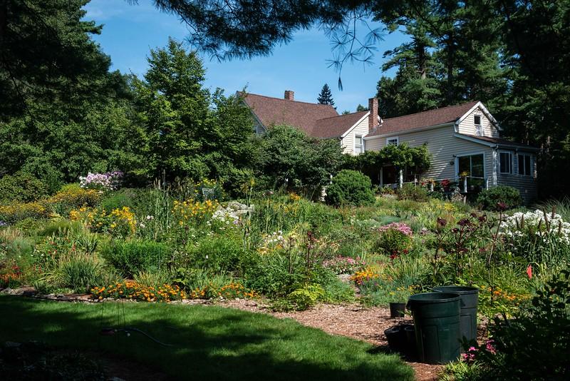 Joe Pye Weed's Garden 8/19/19