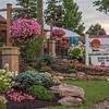 Suncrest Gardens Planting