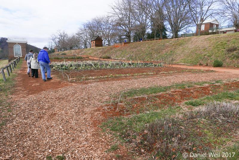 Mr. Jefferson's vegetable garden