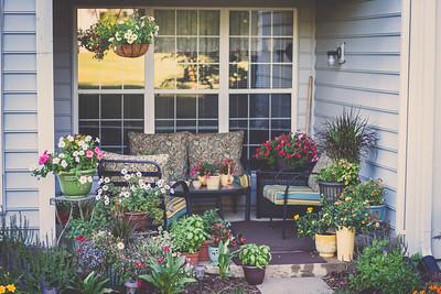 2011 Condo Garden
