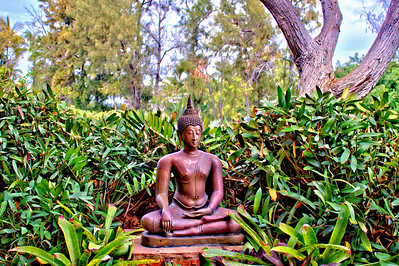 Bronze along the pathway at the Hilton Waikoloa Village