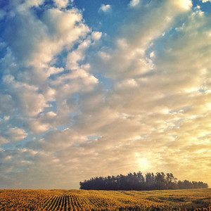 Sunrise at Clear Meadow Farm | Monkton, Maryland | September 2014