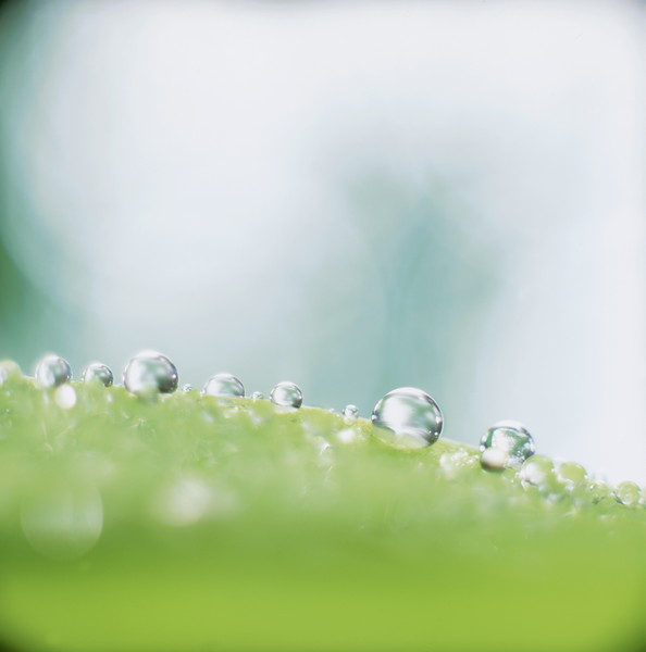 BT  Water Drops Nr.:  42-25211174