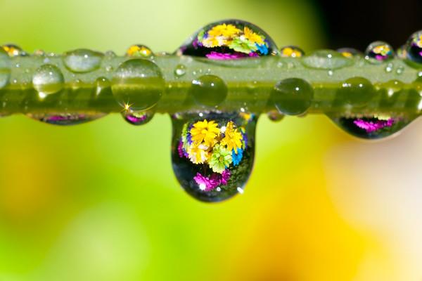 BT  Water Drops Nr.:  42-27041254
