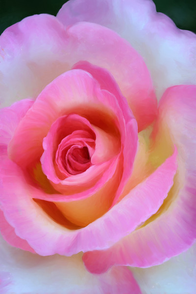 Leann Rimes Rose