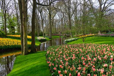 Keukenhof, Netherlands