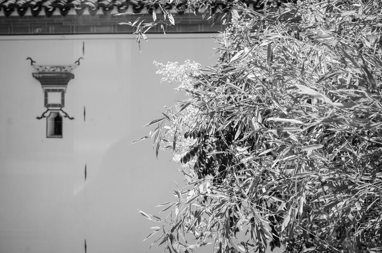 Bamboo, Yin Yu Tang