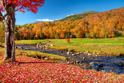 An autumn day in New England.