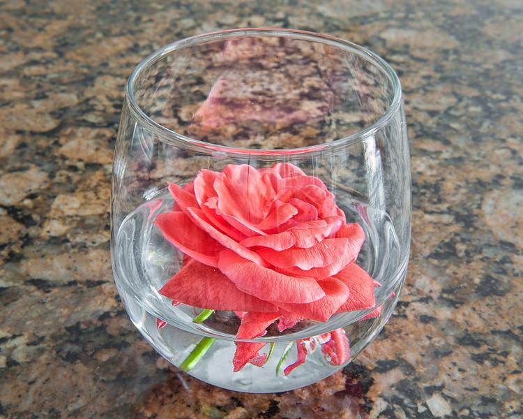 'The Granite Rose'