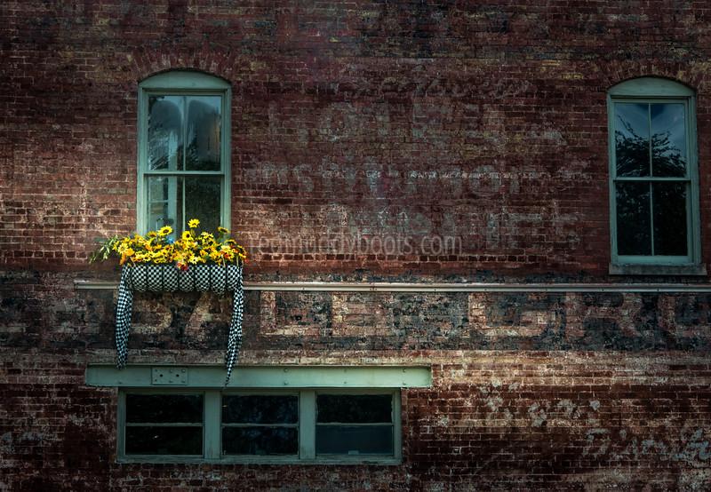 Savannah Blooms