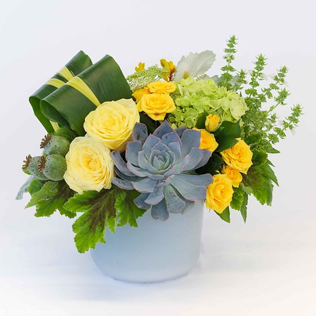 Shades of yellow roses arranged with green hydrangeas with succulents and other accent flowers