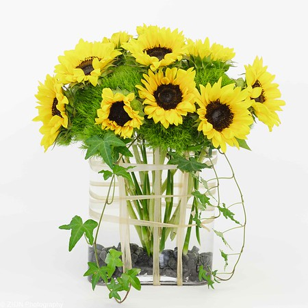 Spectacular yellow sunflowers in an oval style vase with contrasting gray rocks