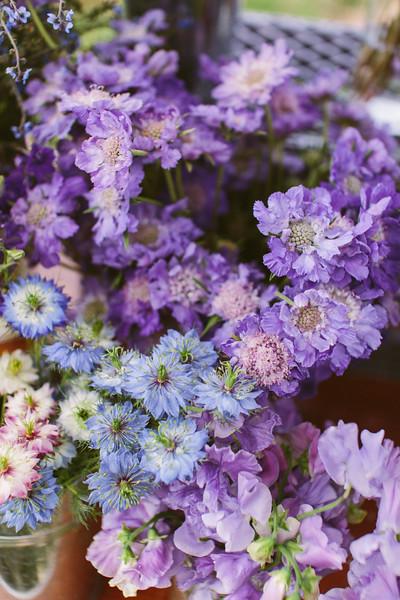 Flourish Flower Farm June 2017