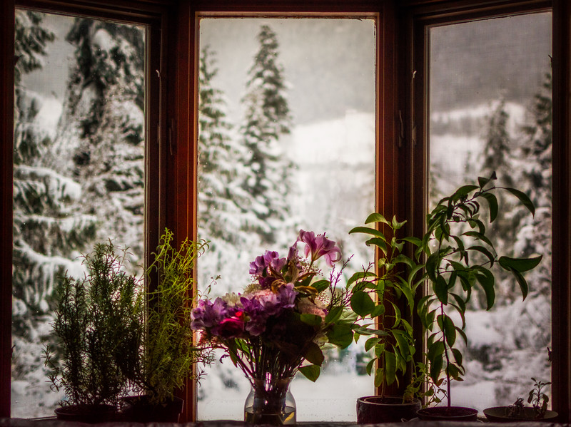 Window on Winter