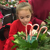 Kylie Lowe, 7, of Woburn, concentrated on the perfect placement of her peppermint candy canes. Photo by Mary Leach