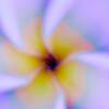 _DSC0022aeamador©-FA1
