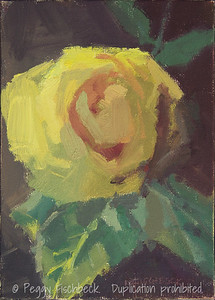 Yellow Rose, 5x7, oil panel - NA